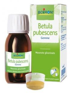 BETULA PUBESCENS MACERATO GLICERICO 60 ML INT